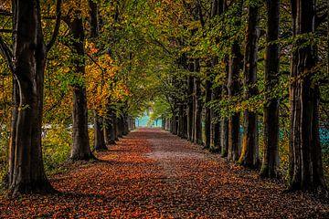 Herfst von Annemie Lauvenberg
