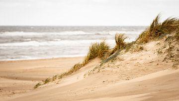Aan de kust van Michael Fousert