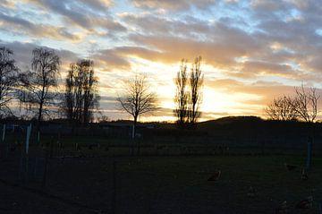 Abends auf dem Lande von Susanne Seidel