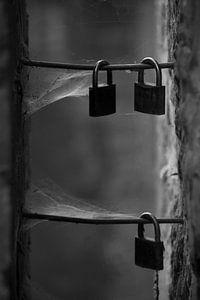 Sloten in zwart wit van