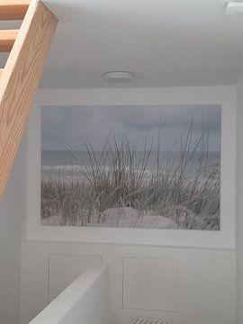 Klantfoto: Nederlandse duinen van DsDuppenPhotography