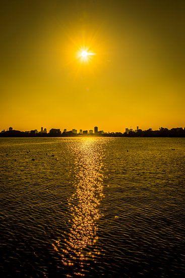 Yellow Rotterdam van Maurice B Kloots      www.Fototrends.nl