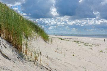 Ameland: Blick auf das Meer vom Dünenübergang mit bedrohlichem Himmel von Walter Frisart