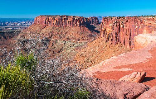Tafelbergen in Canyonlands NP, Utah, VS van Rietje Bulthuis