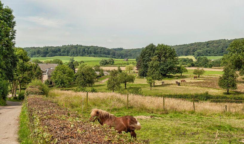 Uitzicht op Limburgs Landschap in de buurt van Epen van John Kreukniet