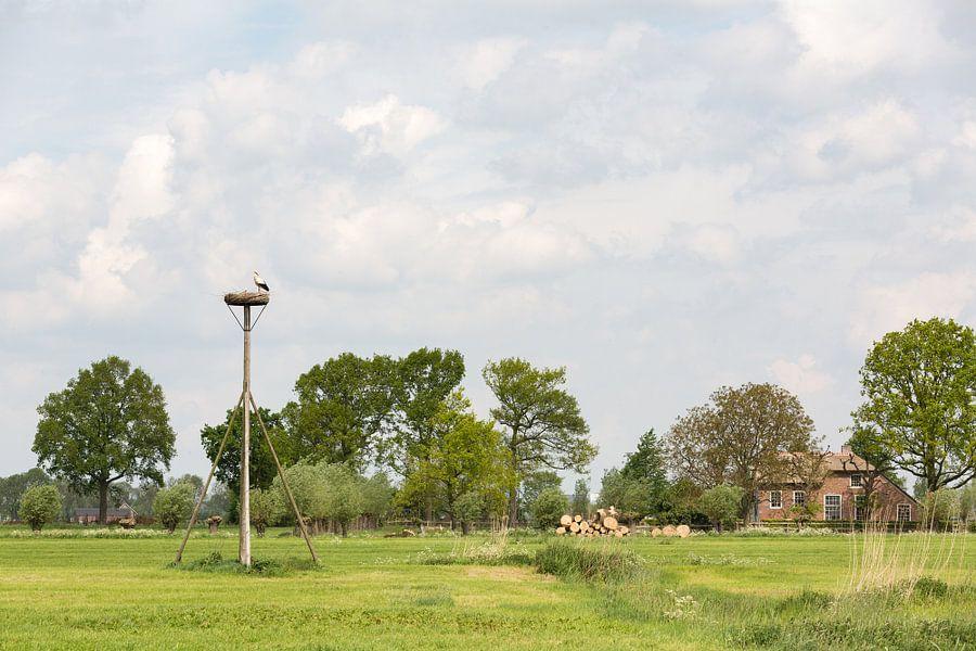 Polderlandschap van Marijke van Eijkeren