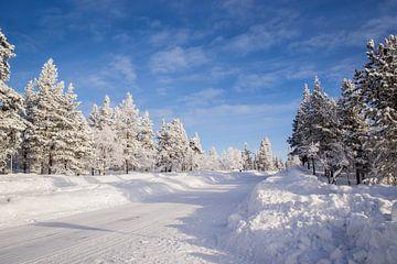 Sneeuw in Fins Lapland van Maria-Maaike Dijkstra