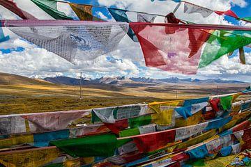 Tibetaanse gebedsvlaggetjes van Eveline Dekkers