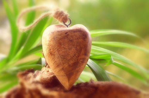 Wellness hart van Tanja Riedel