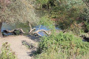 Kerkini-meer - vijver achter de dam