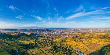 Luftbild Panorama Weinberge in Stuttgart von Werner Dieterich