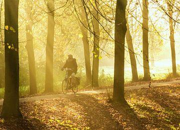 Laantje met fietser en zonnestralen van Anneriek de Jong