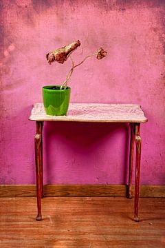 Colorful decay van Carla Broekhuizen