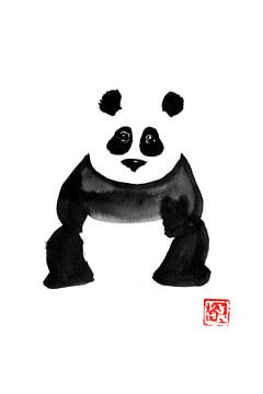 Lustiger Panda von philippe imbert