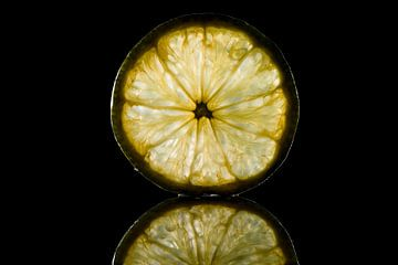 Eine Scheibe erfrischende Zitrone von Corrine Ponsen