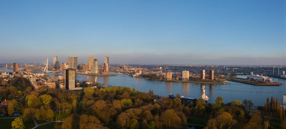 Panorama skyline Rotterdam tijdens gouden uur (zonsondergang)