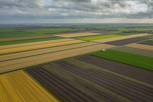 Nederlands polderlandschap van