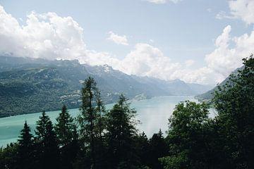 Blick über das blaue Wasser des Brienzersees im Berner Oberland, Schweiz von Evelien Lodewijks