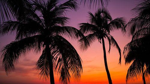 Zonsondergang bij Mambo beach Curacao van Edwin Mooijaart