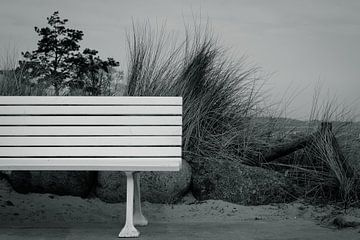 Die weiße Bank von Marc-Sven Kirsch