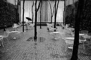 New York -  Rain man van