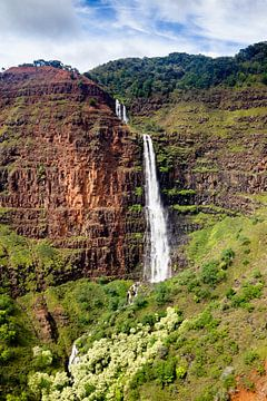 Waipoo Falls, Waimea Canyon, Kauai van Dirk Rüter