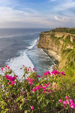 Blumen auf den Felsen von Ulu Watu, Bali, Indonesien von Marc Venema