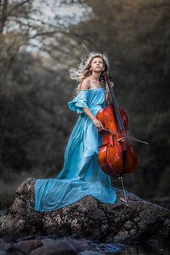 Cello van Elke De Proost