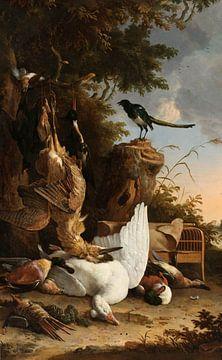 Die kontemplative Elster', Melchior d'Hondecoeter