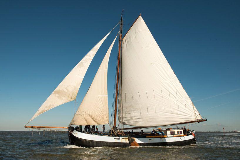 Zeilboot in de wind van Barbara Koppe
