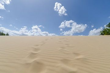 Voetstappen in het zand van Mark Bolijn