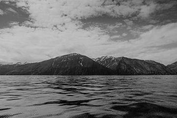 Isländischer See | Schwarze und weiße Landschaft von Floor Bogaerts