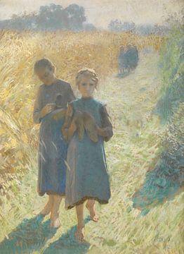 Mädchen auf dem Feld, Emile Claus
