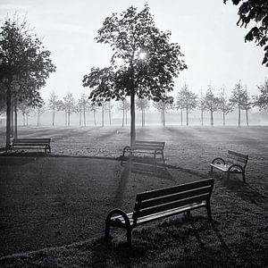 Bankjes in park Assumburg, Heemskerk