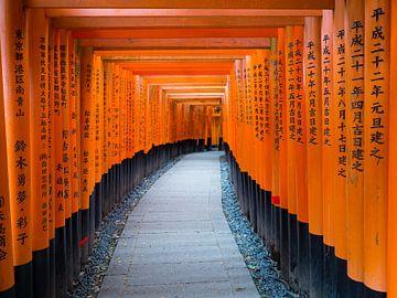 Rode torii bogen in Kyoto Japan van Teun Janssen