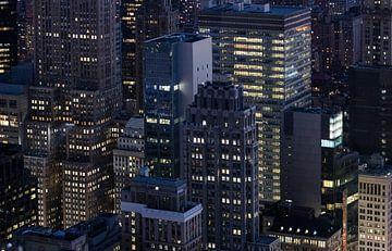 Concrete Jungle - New York van Freek van den Bergh