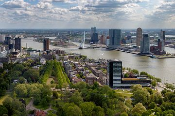 De Erasmusbrug Rotterdam van Menno Schaefer