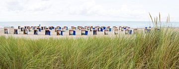 helmgras en strandhuisjes Katwijk von Arjan van Duijvenboden