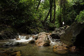 Ambon - Wasserfall von Maurice Weststrate