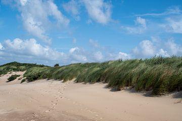 De wind door de duinen en grassen aan het Cadzand-bad strand van JM de Jong-Jansen