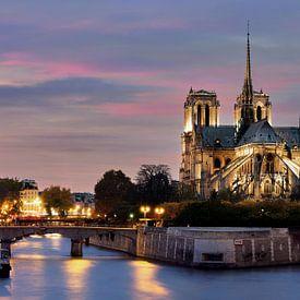 Notre Dame in Parijs van Edwin van Wijk