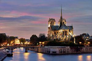 Notre Dame in Parijs van