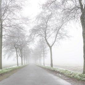 Road to nowhere van Robbert Ladan