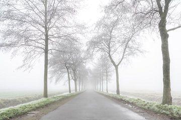 Road to nowhere von Robbert Ladan