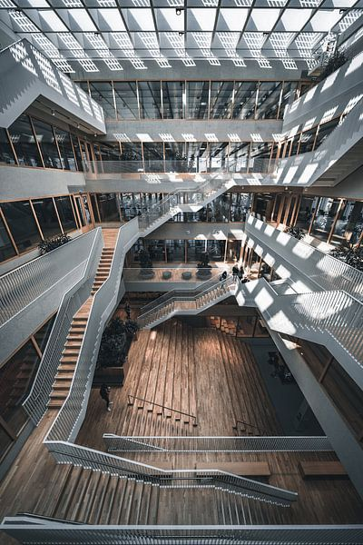 Polak gebouw erasmus universiteit campus van vedar cvetanovic