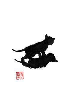 Schattenkatze von philippe imbert