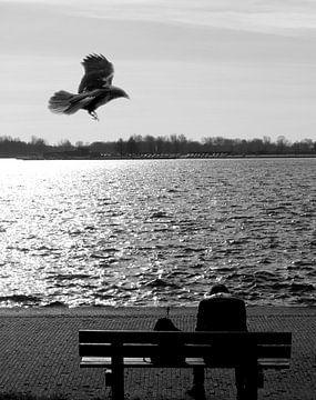 The Crow von David Pichler