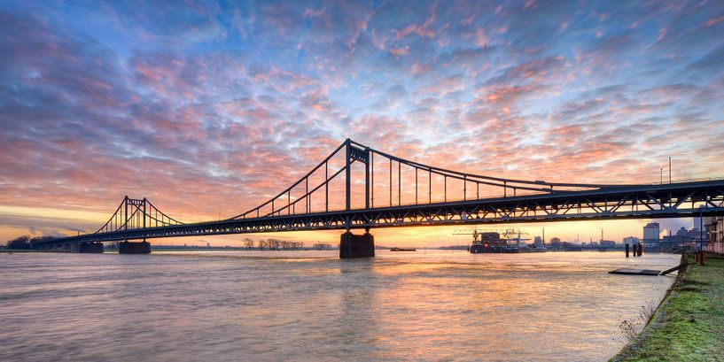 Krefeld-Uerdinger Rheinbrücke bei Sonnenaufgang von Michael Valjak