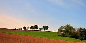 Limburgse heuvels. van