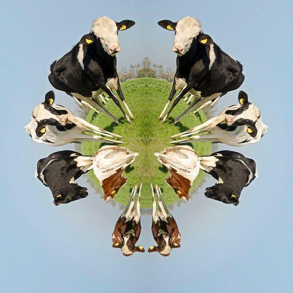 Hollandse koeien van Greet ten Have-Bloem